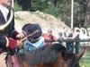 Tradition de chasse à courre dans la forêt de Fontainebleau_RB Fontainebleau et Gâtinais